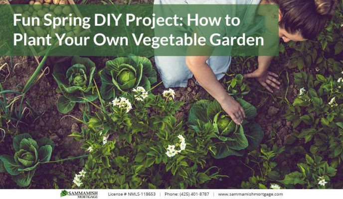 Fun Spring DIY Project How to Plant Your Own Vegetable Garden